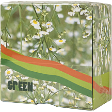 Κύβος σημειώσεων πράσινο