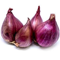 Κρεμμύδια shallot Γαλλίας (~5kg)