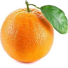 Πορτοκάλια μέρλιν βιολογικά (bio) Αργολίδος