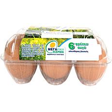 Αυγά ΜΕΓΑΡΙΚΗ ΦΑΡΜΑ φρέσκα ελευθέρας βοσκής (6x53-63g)