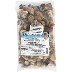 Μανιτάρια porcini ολόκληρα κατεψυγμένα (1kg)